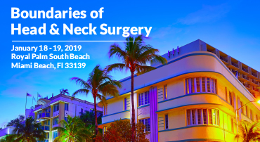 Boundaries of Head & Neck Surgery